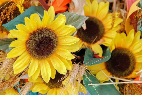 sztuczne kwiaty hurt