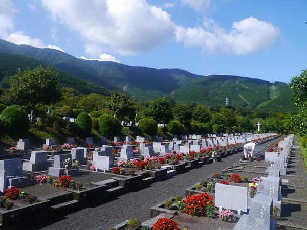 niski koszt kremacji zwłok w Warszawie