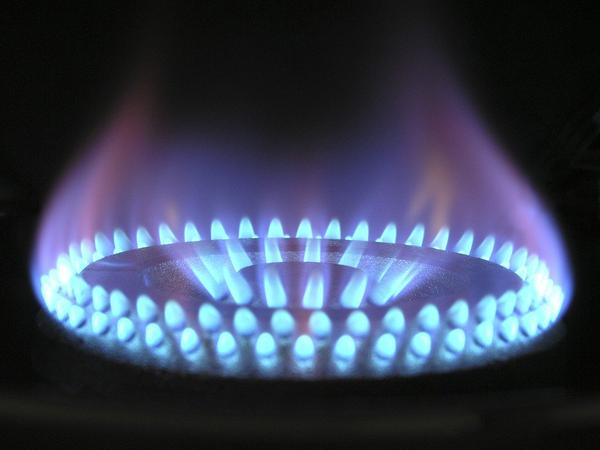 skrzynka do gazu - cena